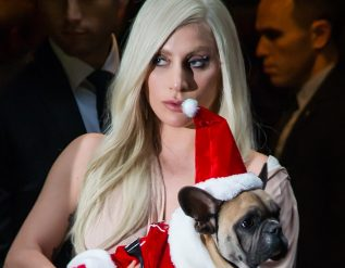 lady-gagas-dogs-are-stolen-and-dog-walker-is-shot