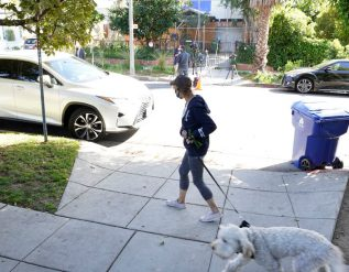 lady-gagas-dogs-are-returned-safely