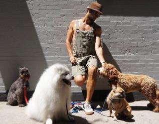 lady-gagas-dog-walker-recalls-being-shot-and-cradling-guardian-angel-dog