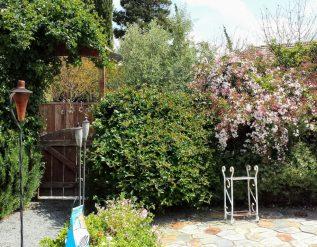 lynettes-california-garden-finegardening