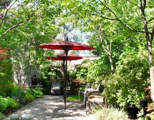 a-garden-in-the-concrete-jungle-part-1