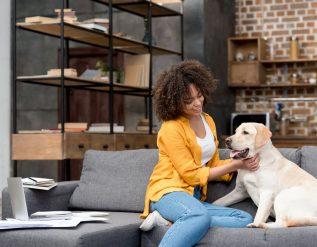survey-reveals-more-pet-friendly-company-policies-post-pandemic