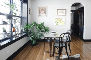 Sculptural Plants to Add Drama to a Room
