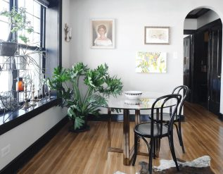 sculptural-plants-to-add-drama-to-a-room