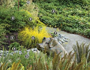 a-deer-proof-garden-design-for-dry-shade-plant-ids