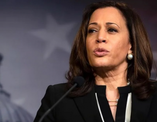 vp-harris-to-investigate-root-causes-of-border-crisis-traveling-to-visit-countries-of-guatemala-and-mexico
