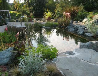 brian-minter-make-a-refreshing-patio-water-garden-a-summer-garden-project