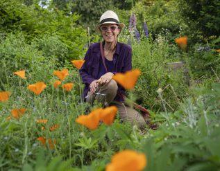 metis-herbalist-plants-seeds-reconciliation-with-medicine-wheel-garden