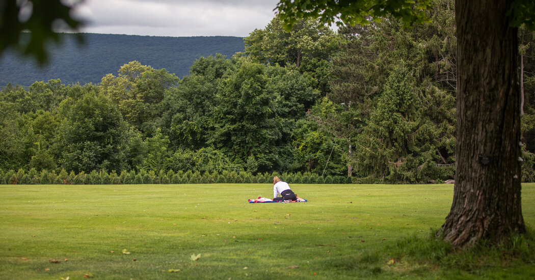 tanglewood-is-back-this-summer-with-beethoven-and-yo-yo-ma