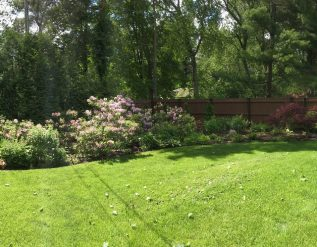 kindig-gardens-part-1-finegardening