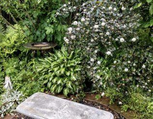 deidres-new-york-garden-finegardening