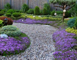 a-japanese-style-garden-in-ottawa