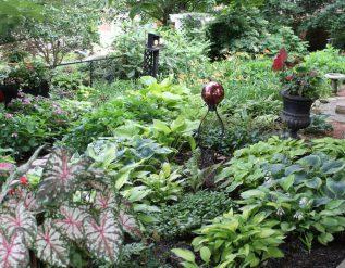 bobs-garden-in-kentucky-finegardening