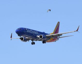 southwest-pauses-plan-to-resume-alcohol-sales-after-flight-attendant-assault