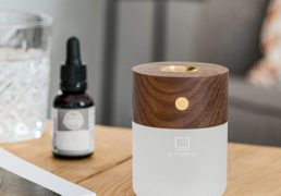 gingkos-smart-diffuser-lamp-will-excite-your-senses-of-sight-smell