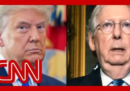 wsj-trump-wants-mcconnell-voted-out-of-senate